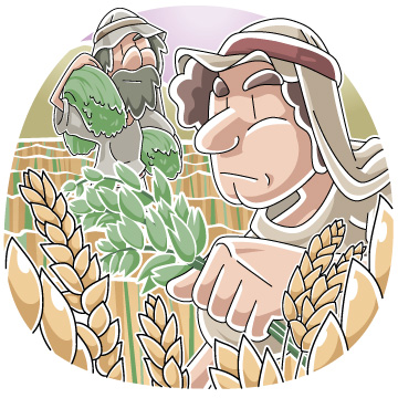Parable of the Wheat and the Tares Sunday School Lesson for July 19, 2020