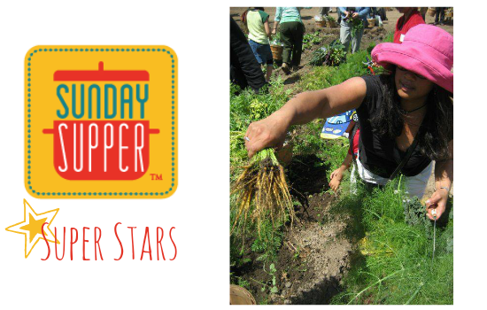 Sunday Supper Super Stars - Camilla from Culinary Adventures with Camilla