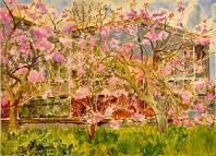Robert Sodden, Cherry Blossom and Bus Depot