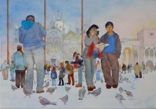 Sian Wilkins, Piazza pigeons