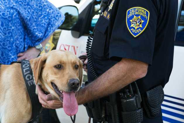 Police dog shown grinning