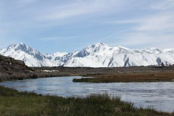 a blue creek surrounded by grass is pictured in front of the giant white mountains