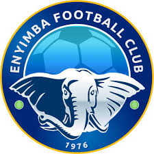 CAF Confederation Cup: Enyimba record vital away win in Senegal