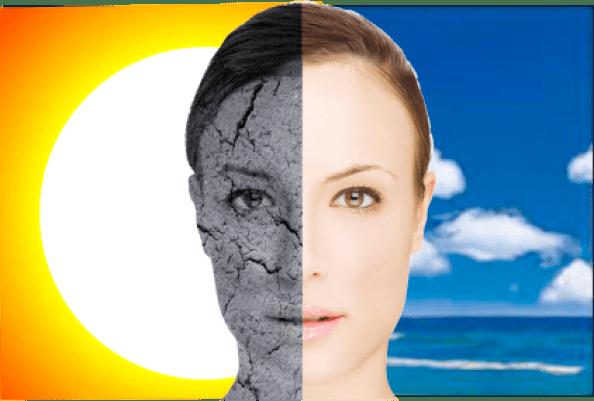 Resultado de imagen de skin and sun