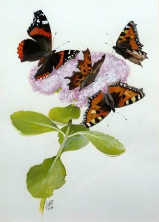 Bird, Wildlife & Animal Paintings