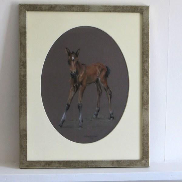 Foal horse painting, Judy Goodman equine artist