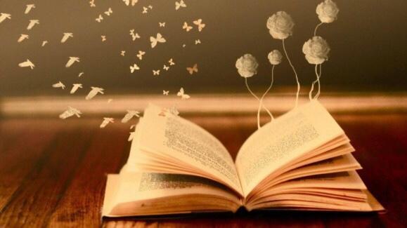 Tôi học được gì sau một kỳ học…đọc!