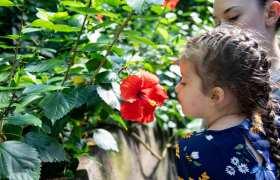 Hayden { Zoo Session }