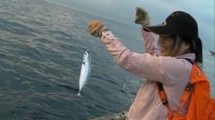 海釣-鯖魚