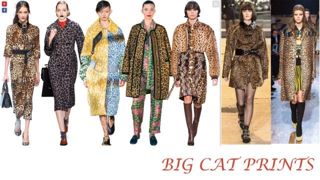 Prints CAT