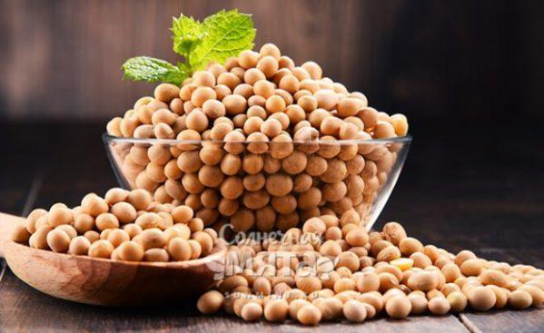 Соя – описание и сорта, состав и калорийность, польза и ...