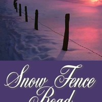 Review of Snow Fence Road