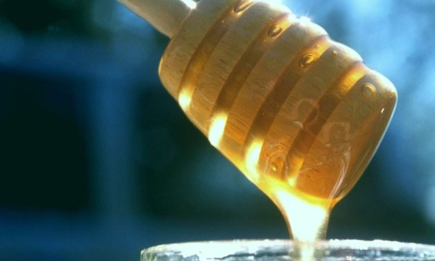 Prophetic Guidance: The Cure in Drinking Honey