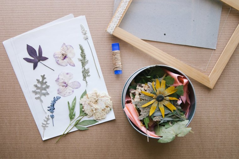 herbarium tina khabarova sunniest2