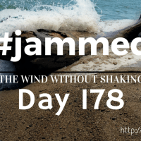 The Spontaneous Delivery (#jammed daily devo, day 178)