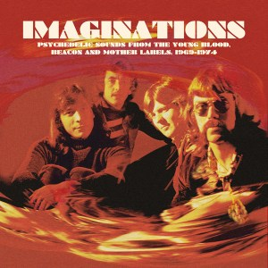 Various – Imaginations