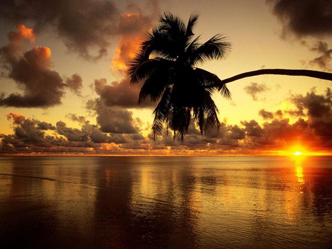 Beautiful beach 1