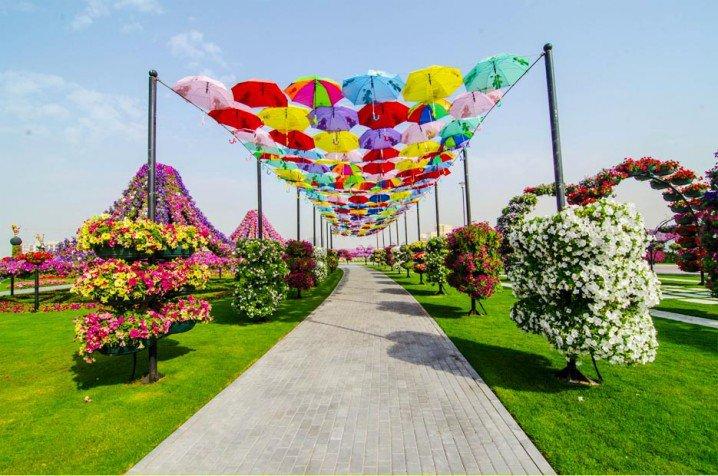 Marvelous-Dubai-Miracle-Garden