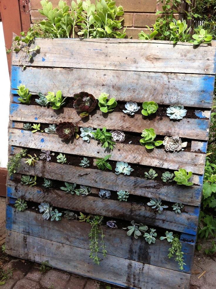 Ιδέες DIY Κάθετου κήπου8