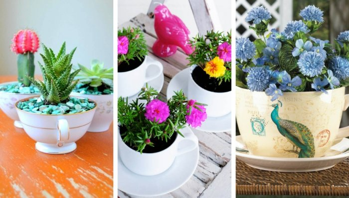 32 υπέροχες ιδέες μίνι κήπου σε φλυτζάνια τσαγιού για να προσθέσετε την ευδαιμονία στο σπίτι σας
