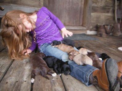 singing puppies to sleep