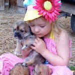This little Gal is having a hard time choosing her new puppy! She loves then ALL