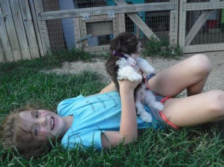 Playing with Puppies