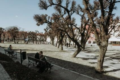 biesy - www.karolnycz.com -105