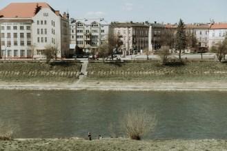biesy - www.karolnycz.com -119