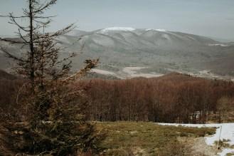 biesy - www.karolnycz.com -16
