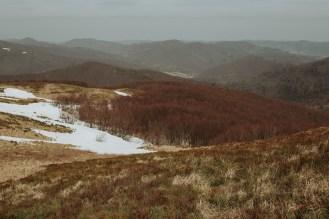 biesy - www.karolnycz.com -33