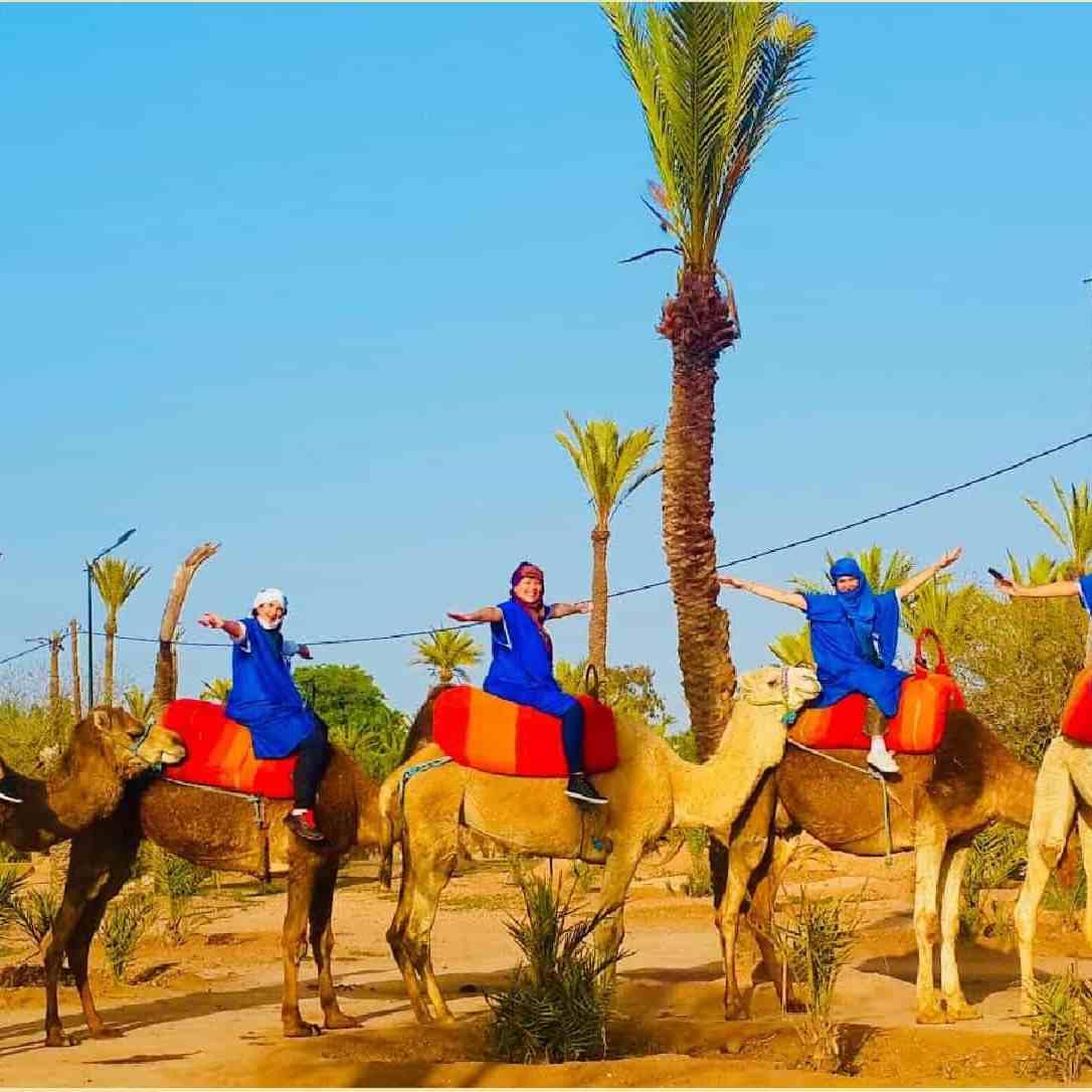 Marrakech Palmeraie Camel Ride