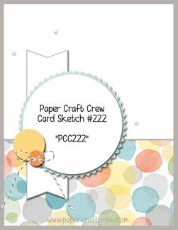 Play along with the Paper Craft Crew with Card Sketch 222 ends on 12/13 at 1:00 PM EST. Visit www.papercraftcrew.com for the latest challenge. #papercraftcrew #pcc2016 #sunnygirlscraps #cards #stampinup