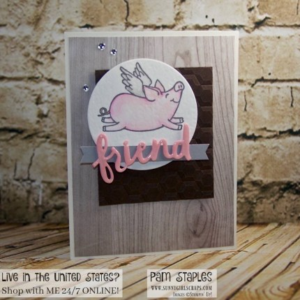 This Little Piggy Sneak Peek created by Pam Staples for the Paper Craft Crew Sketch Challenge 241. Visit sunnygirlscraps.com to place an order. #thislittlepiggy #stampinup