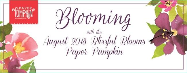 Paper Pumpkin Videos