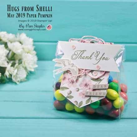 Treat Bag featuring a Thank You Tag with a bird using the Hugs from Shelli Paper Pumpkin Kit