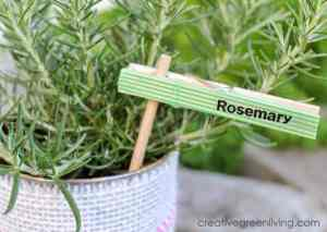 Clothes Pin with Washi Tape DIY Plant Marker