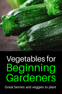 Best vegetables to plant for beginning gardeners