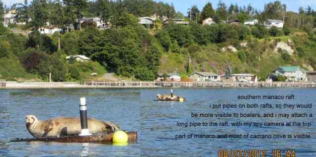 manaco-seal-raft-3