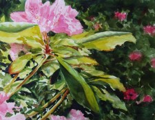 jack-dorsey_-watercolor_-glory-of-creation
