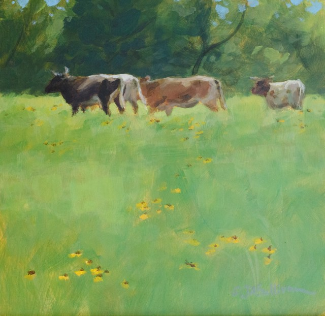 cows_in_a_field