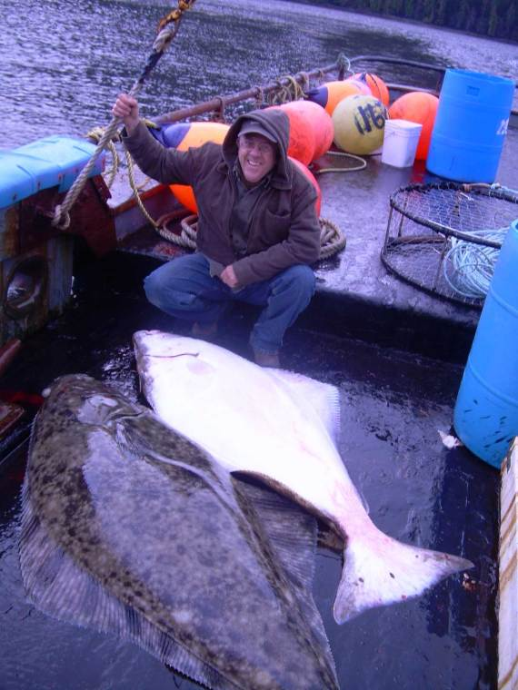 Aboard Seven Seas in Nakat inlet with 250lb Halibut 2009