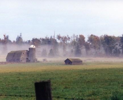 Doc Dodgson's Farm