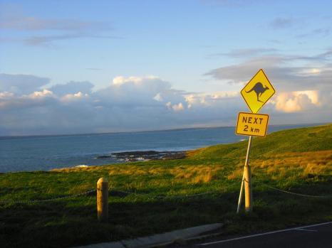 Ausflugsziele Melbourne Philip Island