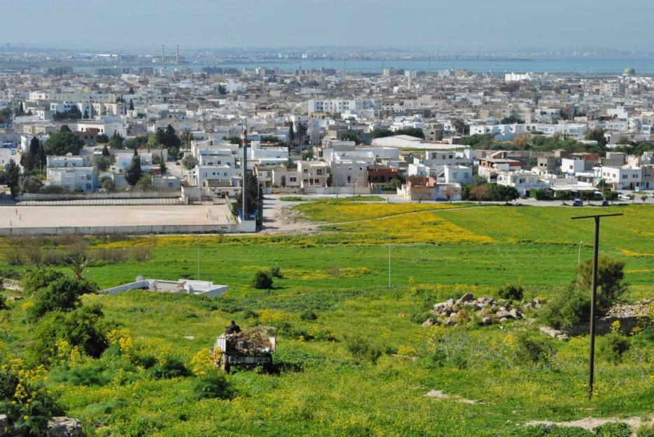 Reise Tunesien gefährlich? Ausblick auf Tunis
