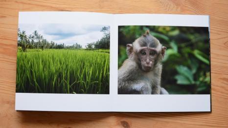Saal-Digital Fotobuch: 28x28cm mit matten Innenseiten