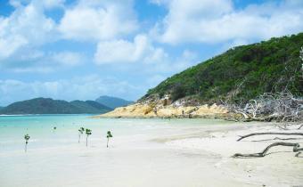 Australische Inseln Ostküste