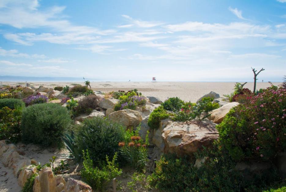 Reiseplanung Südafrika Reisezeit