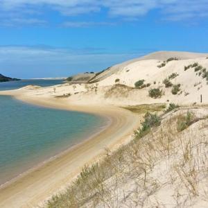sandboarding südafrika alexandria coastal dunes colchester