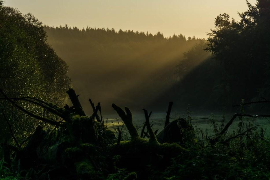 Teutoburger Wald Sehenswürdigkeiten